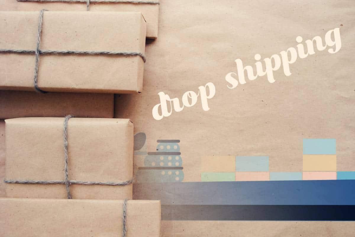 Pourquoi faire une formation en dropshipping ?